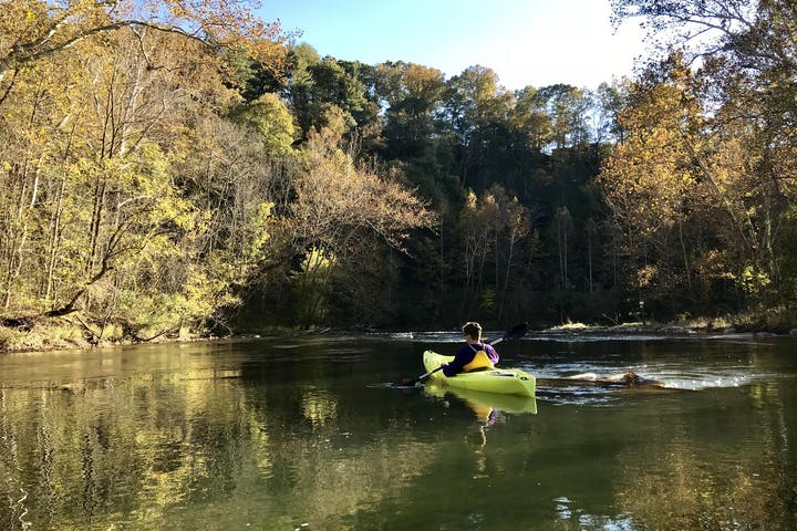 A kayaker on the river surrounded by trees