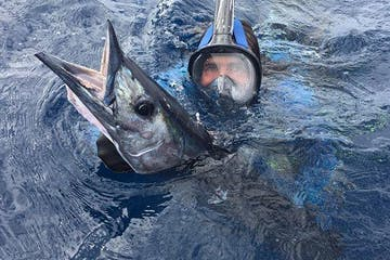 baja spearfishing adventures