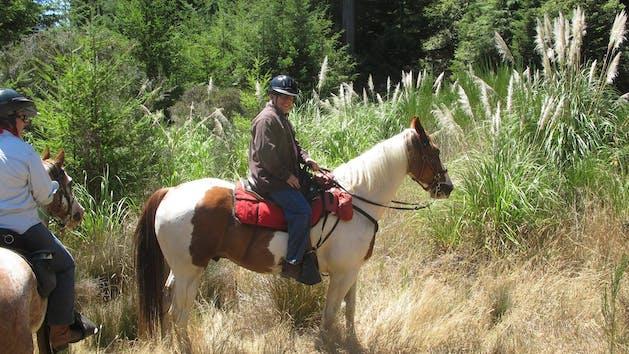 Horseback rides in McKerricher State Park