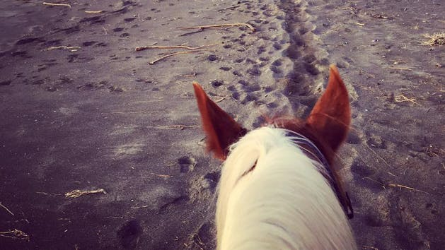 Horseback riding on Ten Mile Beach, California