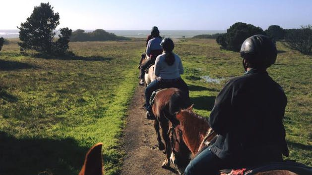 Private horseback rides in McKerricher State Park