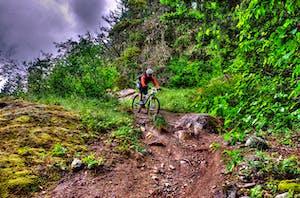 mountain biking in pemberton