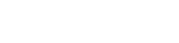 Sea Dolphin Charters