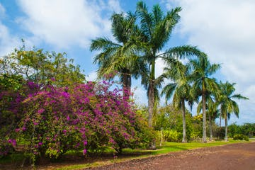 hawaii World Botanical Gardens