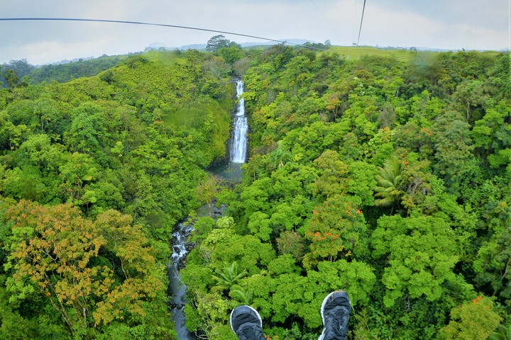 ziplining hawaii botanical world adventures