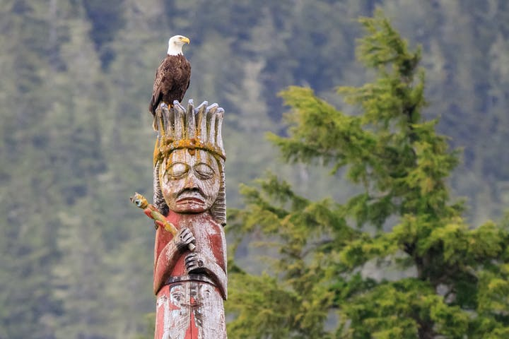 Eagle on top of totem. Photo by Rich Rijinders Photography