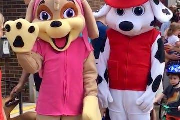 pup patrol costumes
