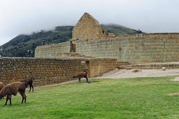 The Ruins of Ingapirca