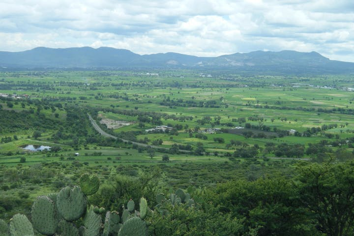 Agricultural land with mountains in the background