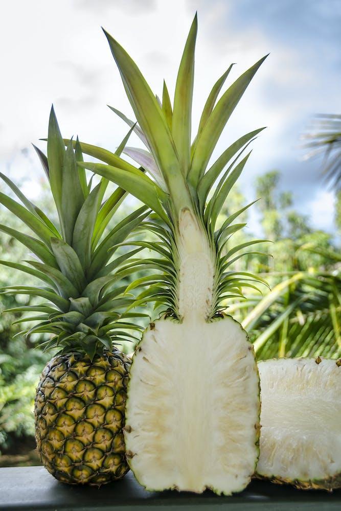 hawaii pineapple season  tasting kauai