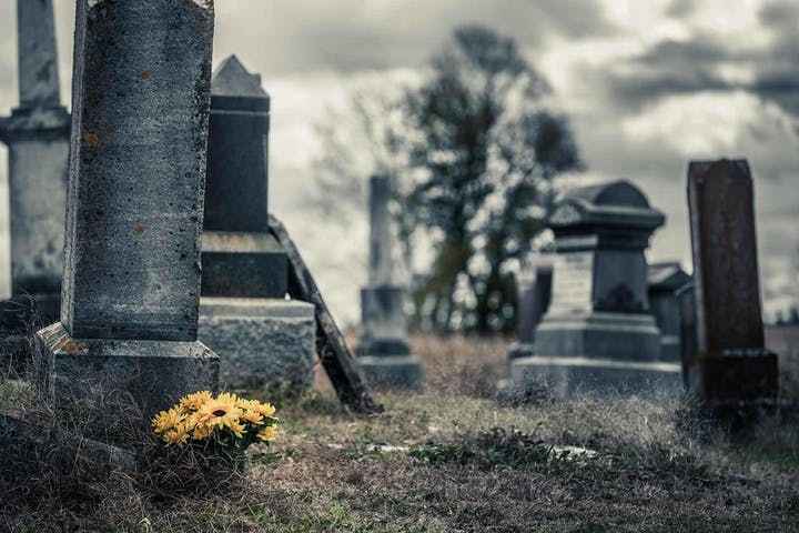 Gravestones in a cemetery. One gravestone has yellow daisies planted aside, juxtapositioning itself in the scene.