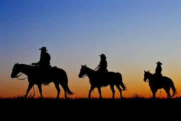 Three horseback riders riding during sunset