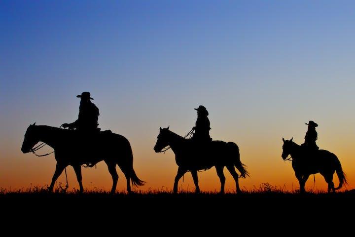 Three horseback riders riding during sunset