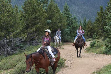 Group of horseback riders walking down wide path in the woods