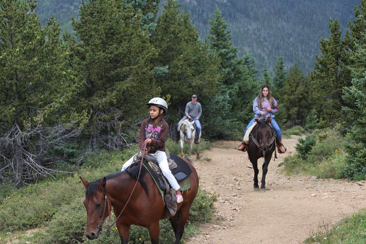 Group of horseback riders walking down wide path in the woods