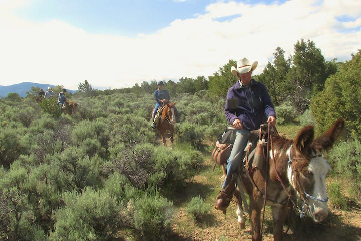 Guide leading horseback riders through sage brush trail