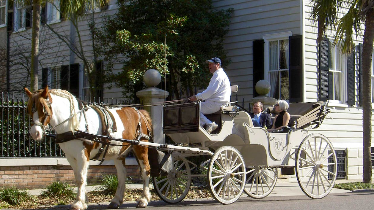 Private Carriage Tour Charleston
