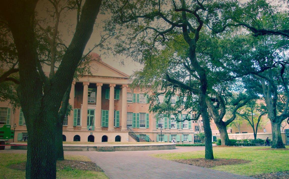 Palmetto college-bg