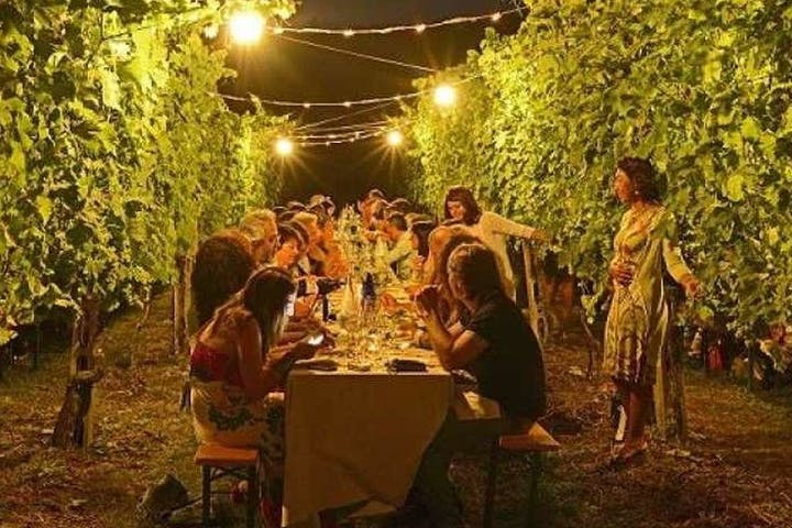 Dinner in a Tuscan Vineyard Image
