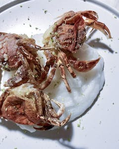 a crab on a white plate