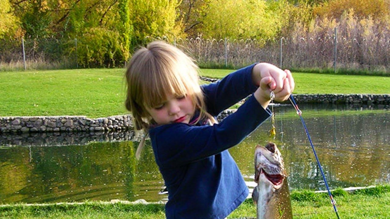 Regular fishing cold springs trout farm for Trout farm fishing