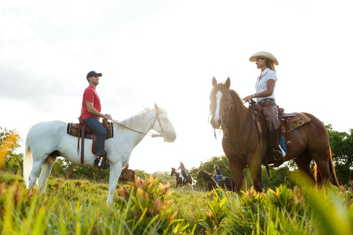 Private Horseback Ride