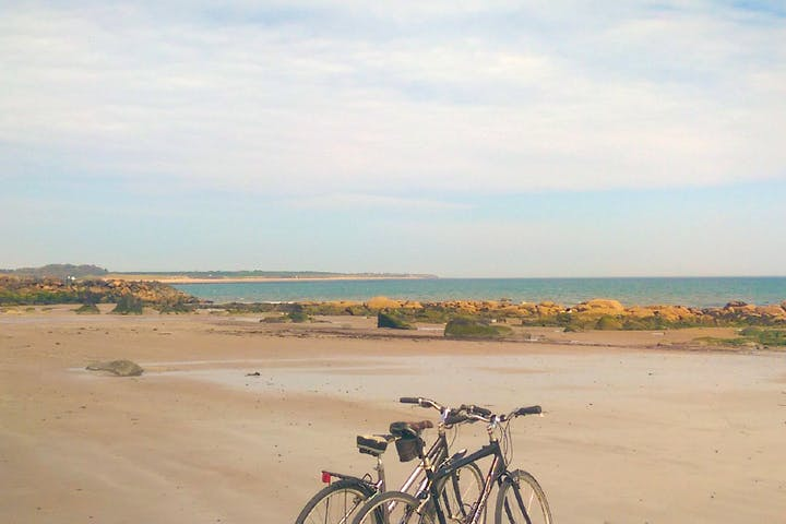 Bicycles parked on the beach in Wexford