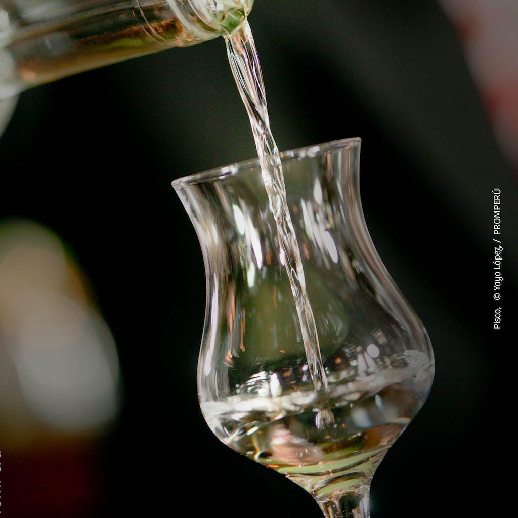 Bicchiere di Pisco peruviano