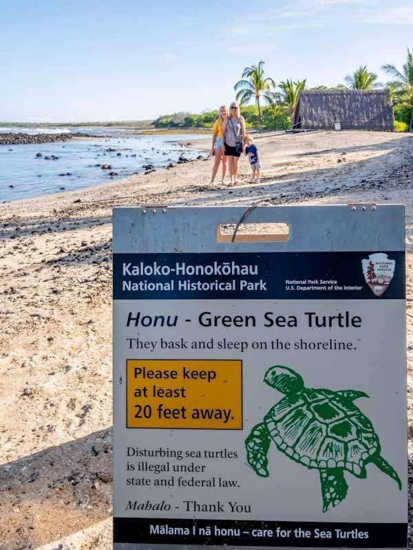 Kaloko Honokohau best turtle beach kona