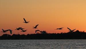 Sunset over Jupiter, FL