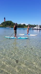 STAND-UP PADDLING ON WITH MANATEES AND SEA TURTLES