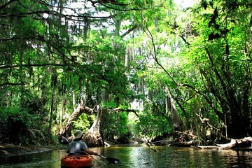 wild and scenic Loxahatchee river tour