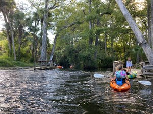 Paddle the Wild and Scenic Loxahatchee River