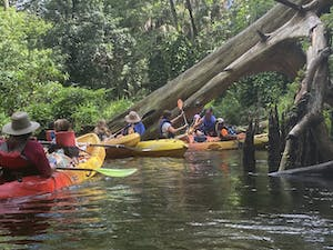 a group of people riding on the back of a boat