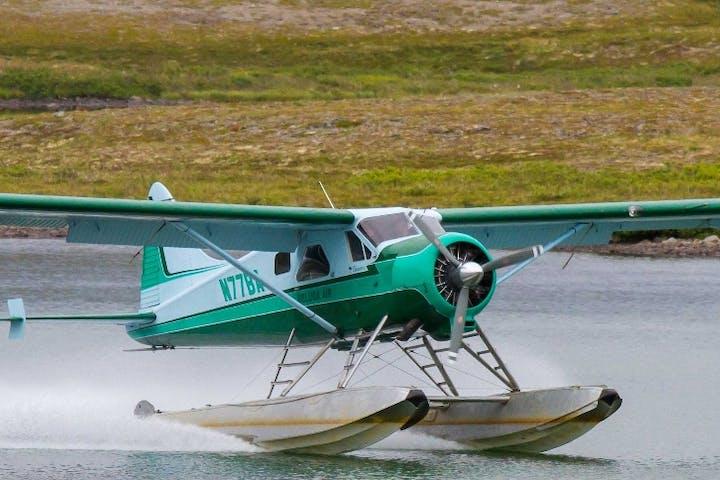 beaver air airplane landing on water