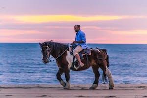 Our Horses Virginia Beach Horseback