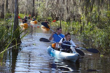 A group of people kayaking through a swamp near New Orleans
