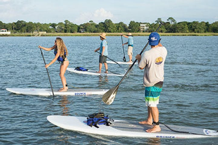 four people on paddle boards