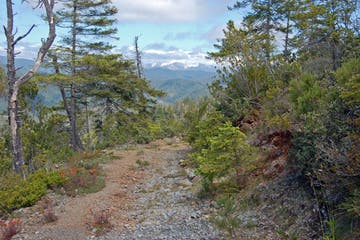 View of dirt trail with mountain overlook in the distance