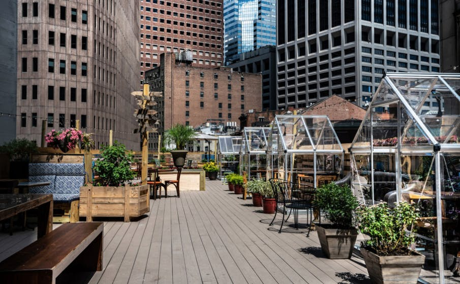 greenhouse dining on rooftop at restaurant in NYC