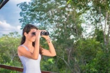 girl viewing birds via binoculars