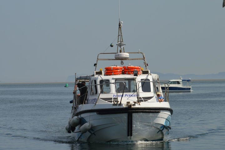 Puffin Island Wildlife Cruise boat