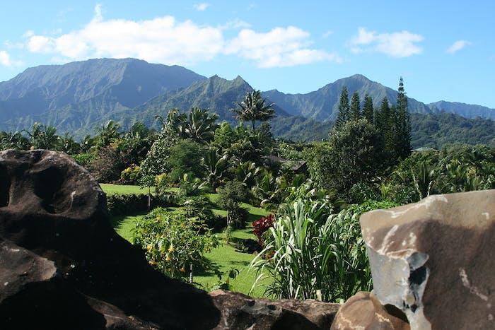 Princeville Botanical Gardens Kauai Chocolate Garden Tours Hi