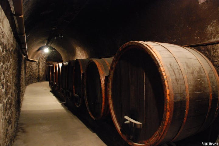 Wine barrels in a cave