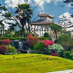 Spring Tea Garden at Houmas House