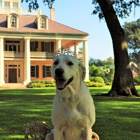 Maggie with Mansion