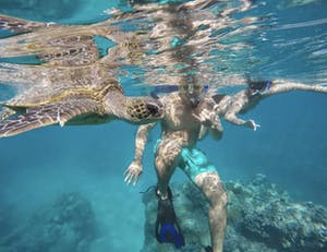 a turtle swimming under water with 2 snorkelers