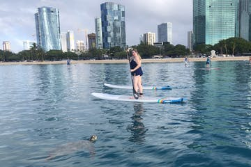 woman paddle boarding with a sea turtle on a body of water with a city in the background