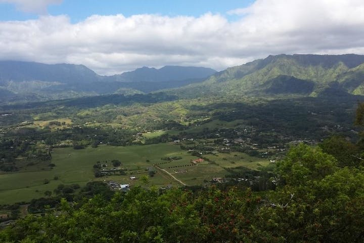 An aerial view of the Kauai greenlands