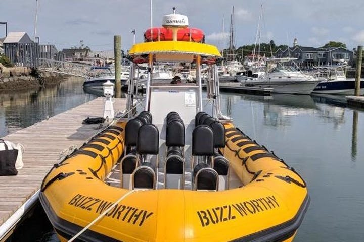 Image of Buzzworthy boat